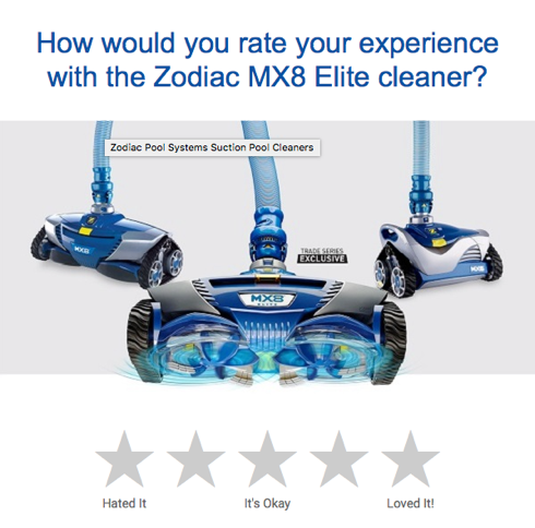 Zodiac Cleaner
