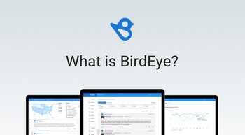 What Is Birdeye